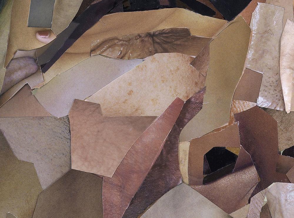 Bush Detail 4.jpg