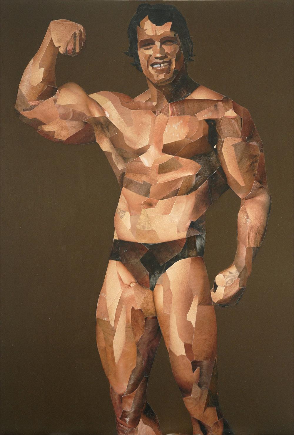 Arnold Schwarznegger Collage.jpg