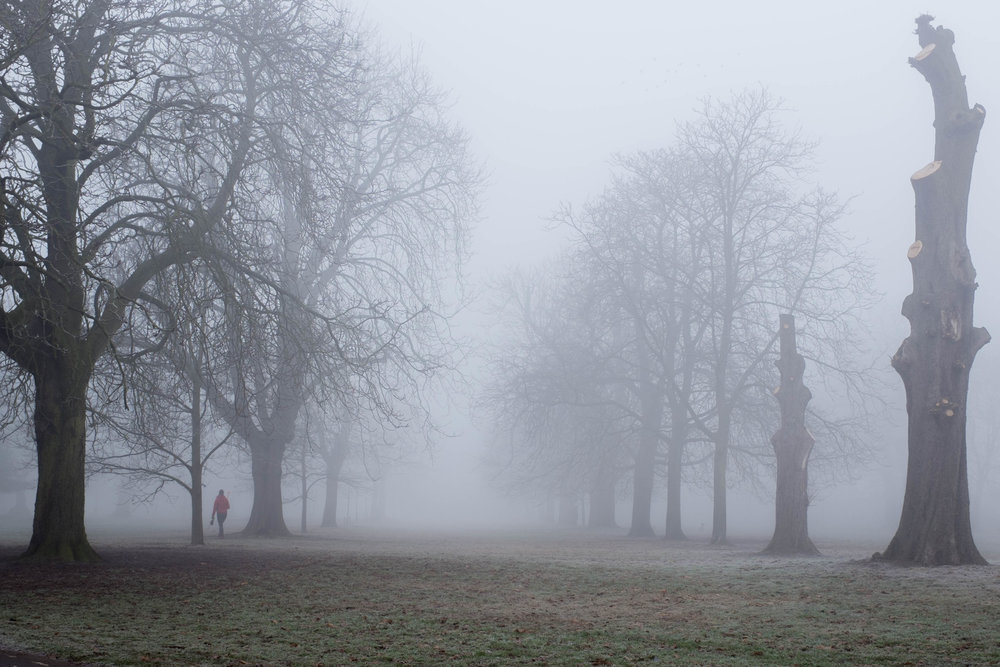 Foggy Blackheath Walk