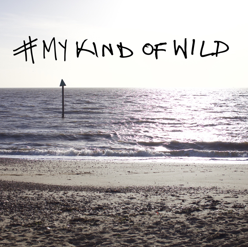 mykindofwild4.jpg