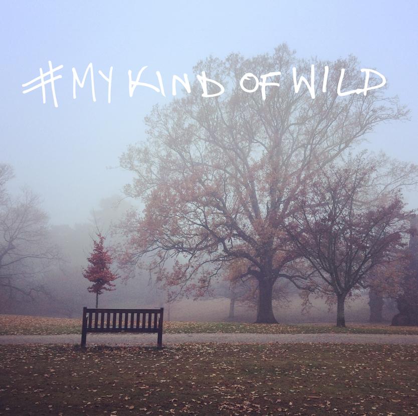mykindofwild5.jpg