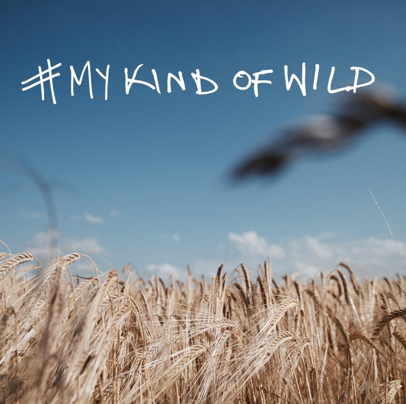mykindofwild6.jpg