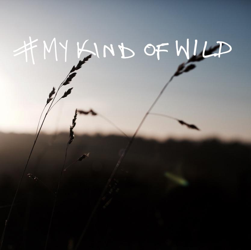 mykindofwild8.jpg