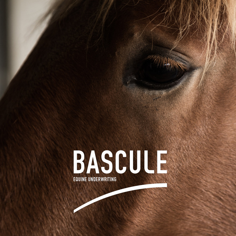 BASCULE EQUINE UNDERWRITING
