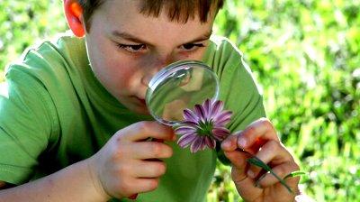 exploring-nature.jpg