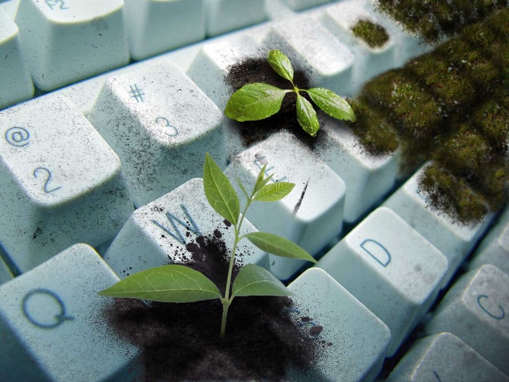 nature-coding.jpg