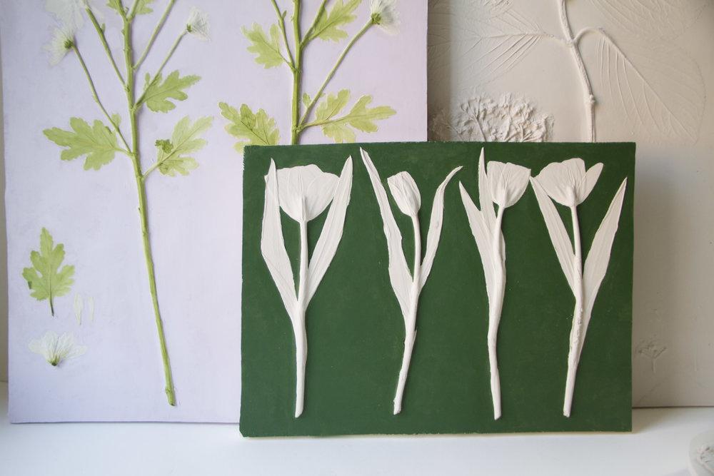 Tulipia: Tulip 01-14 -