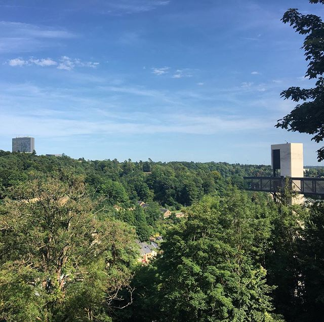 Guess where am I? Luxembourg! This city is maybe the smallest capital I've seen so far! But it's pretty nice and it's perfect for a calm and peaceful holiday week. . . . #Luxembourg #grund #city #europe #trees #forest #holiday #sunny