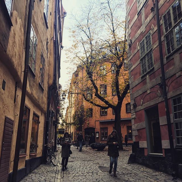 Just a quick snapshot of Gamla Stan in Stockholm. I love this city so much. After Amsterdam, I definitely want to spend some time here! . . . #stockholm #sweden #gamlastan #oldtown #street #autumn #autumn🍁 #holiday #weekend