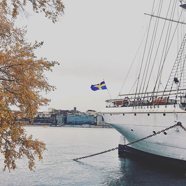Mixed feelings tonight: I'm so glad to be back in Amsterdam today but my trip in Stockholm was way to short. I really look forward to visit this Swedish city again and discover all its secrets! My head is full of images and memories of this great automnal weekend! 🍁🇸🇪 . . . #stockholm #memories #water #ship #flag #cloudy #sweden #sverige #weekend #autumn🍁 #autumn #autumnleaves