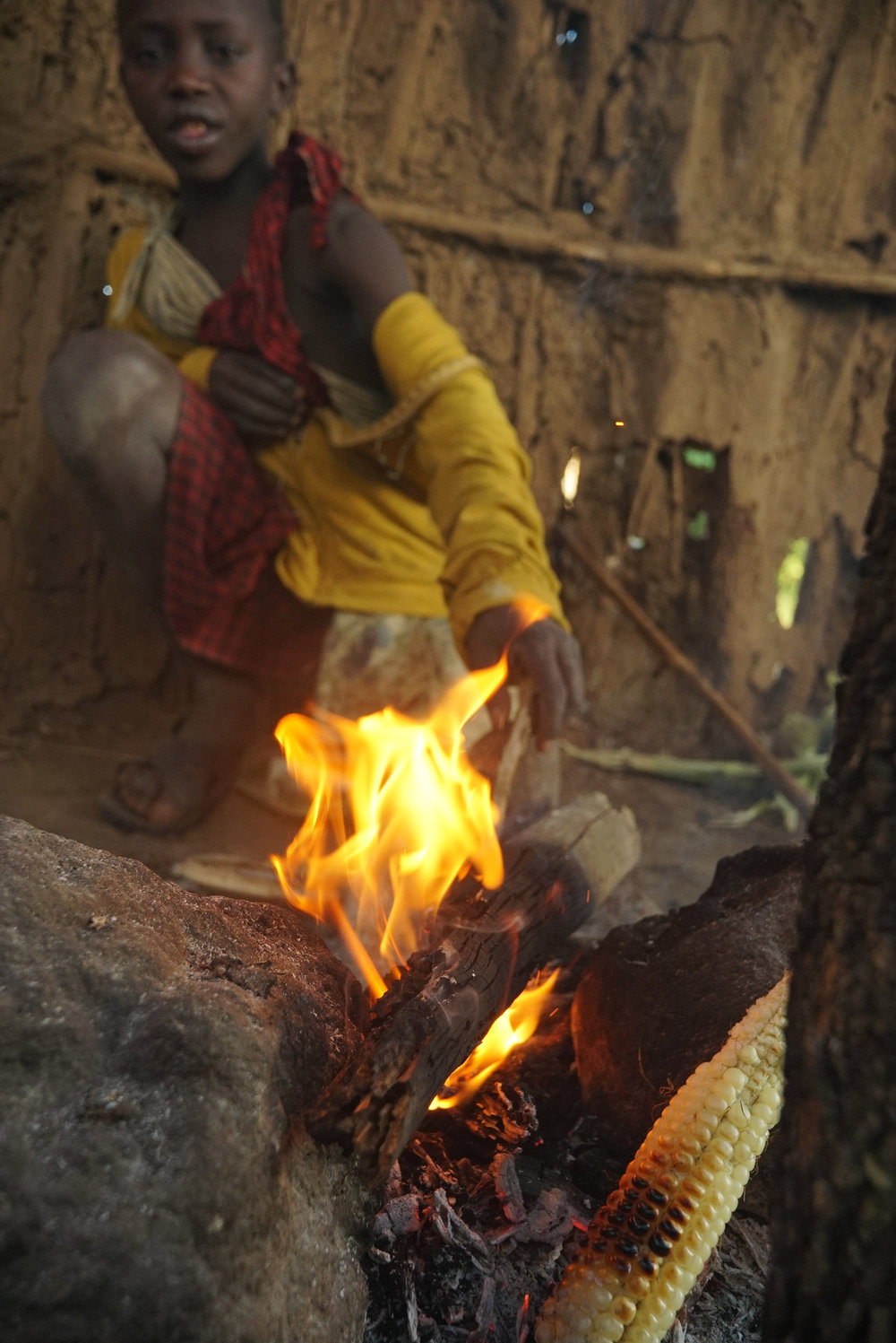 Tanzania campfire compressed.jpg