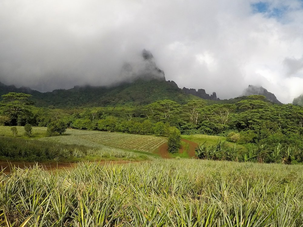 Tahiti 11.JPG