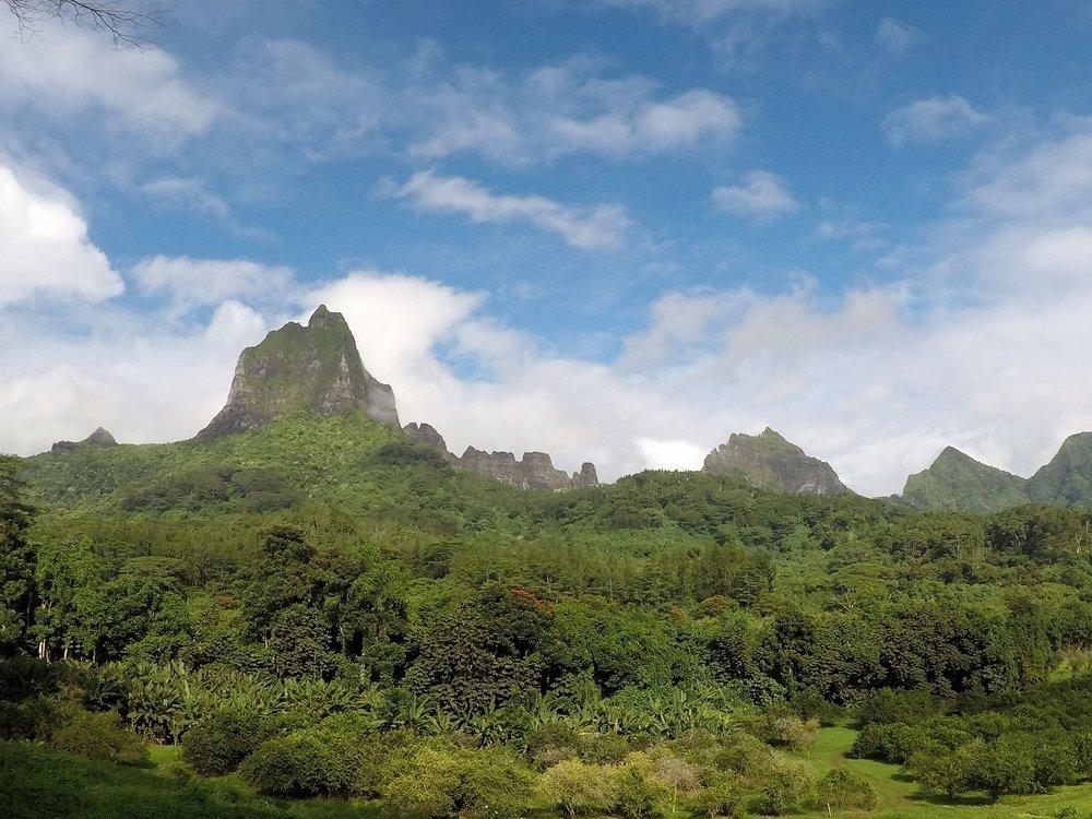 Tahiti 12.JPG
