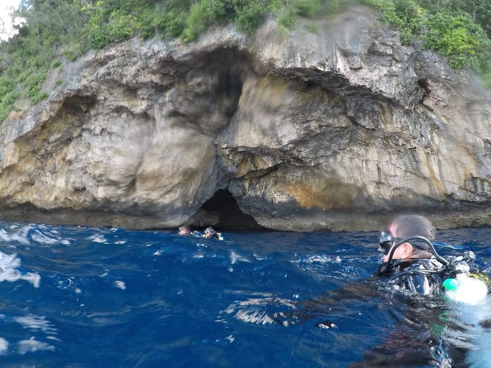 Tonga dive 1 003.JPG