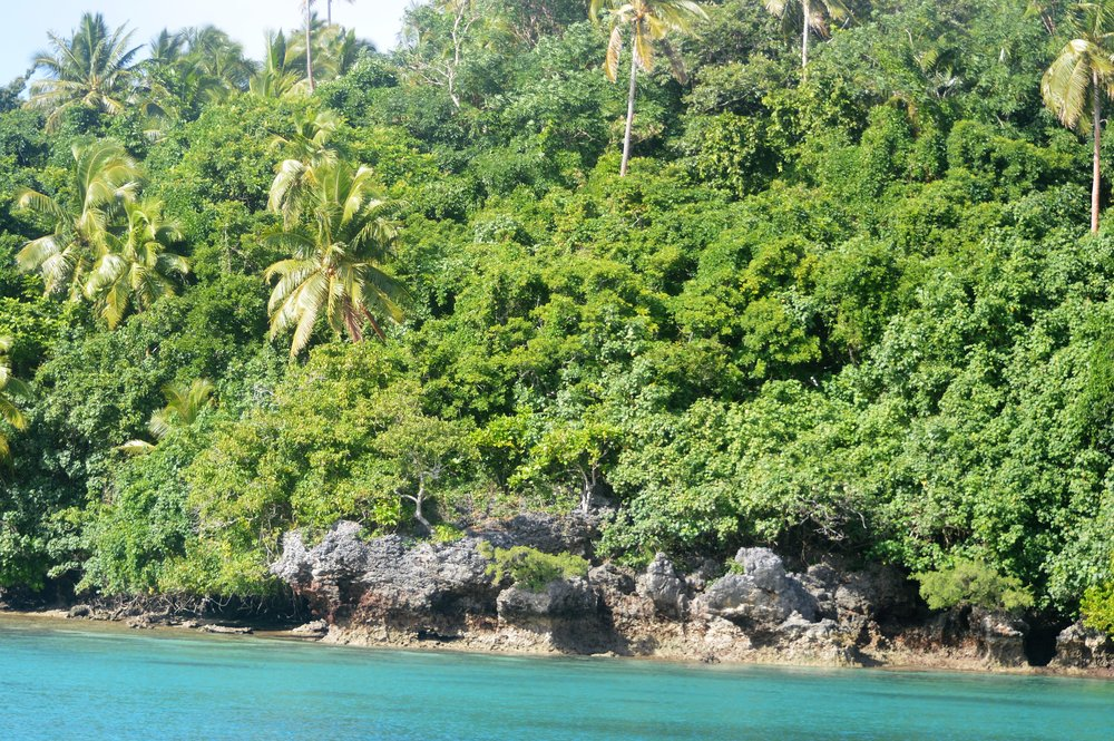 Tonga & Fiji 004.JPG