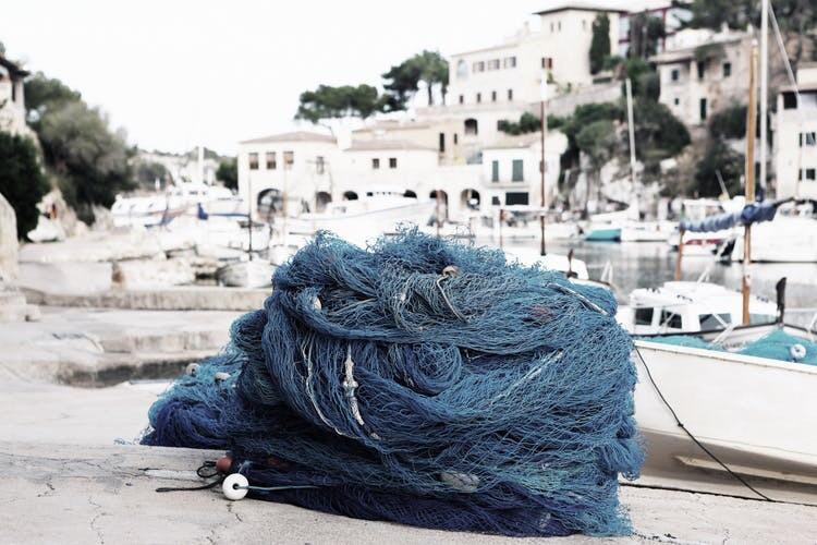 Tangle of fish nets