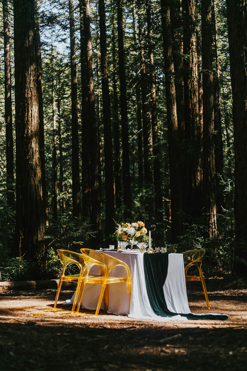 RedWoods_Styled_May2-56-2.jpg