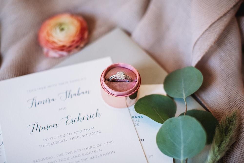 Mason-Amira-Wedding-20.jpg