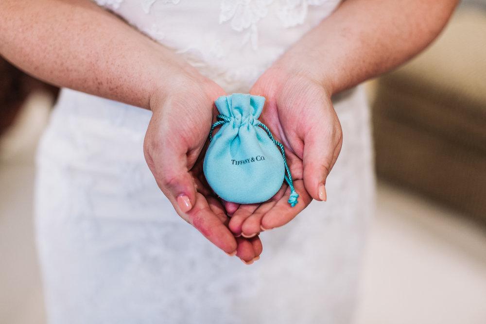 Mason-Amira-Wedding-115.jpg