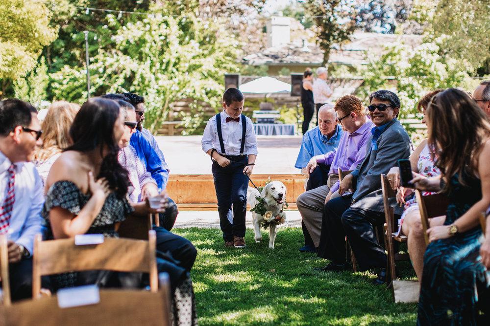 Mason-Amira-Wedding-222.jpg