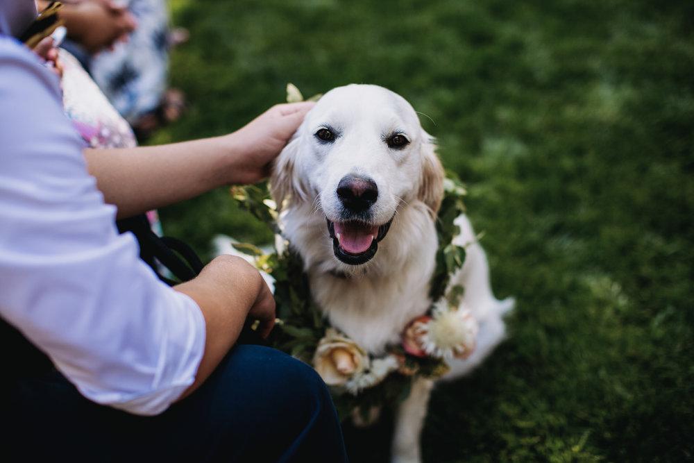 Mason-Amira-Wedding-262.jpg