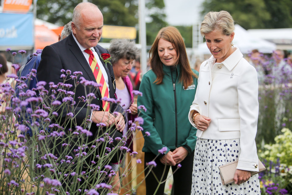 Sophie, Countess of Wessex visits the New Forest Show 2016.