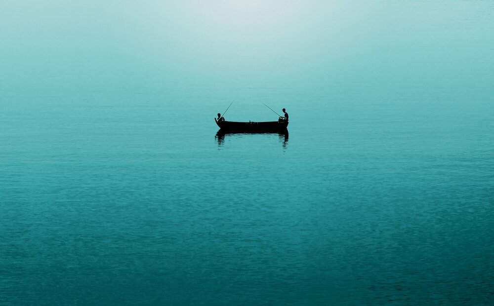 Sea-Life