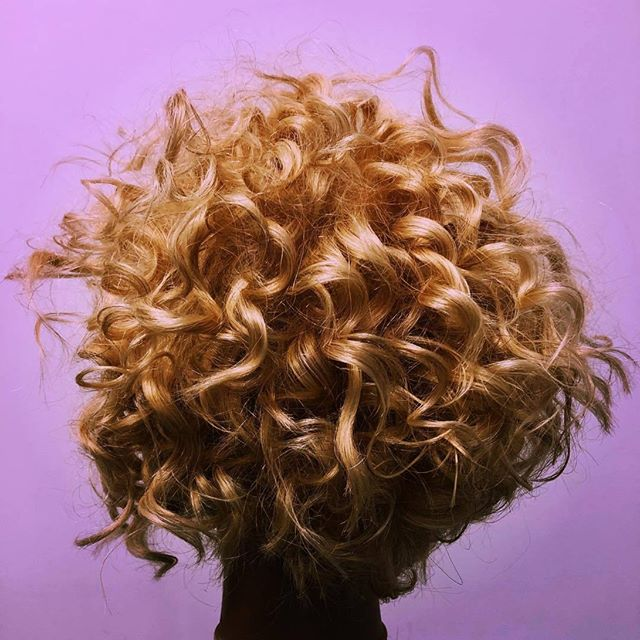 #Repost @dbhaireducator CURLS CURLS CULRS 😍 - #curls#curlyhair #shortcurlyhair #shorthair#haircut#hair#haare#crafthairdresser#knowledge #paulmitchell #paulmitchellde #paulmitchellus #openminded #hairdesign #hairdo#hairbrained_official #hairnerd#geometry #round#square#triangle#academy#bmacscissors #lovemyjob#texture#friseur