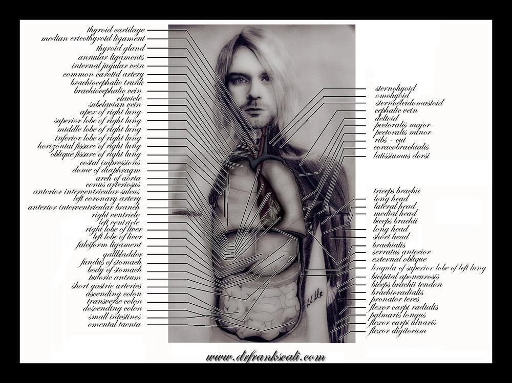 Kurt Cobain with labels