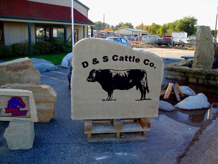 D & S Cattle Co.jpg