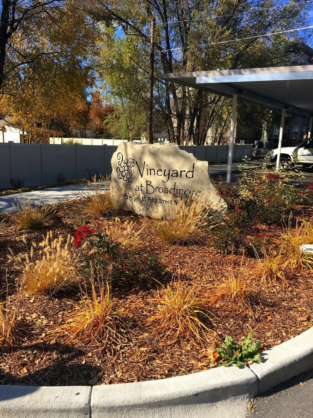 Vineyard at Broadmore.JPG