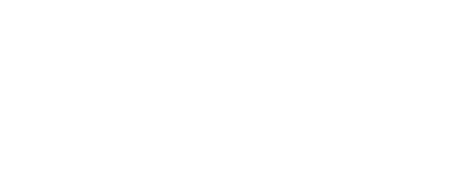 THE STUDENT ARCHITECT