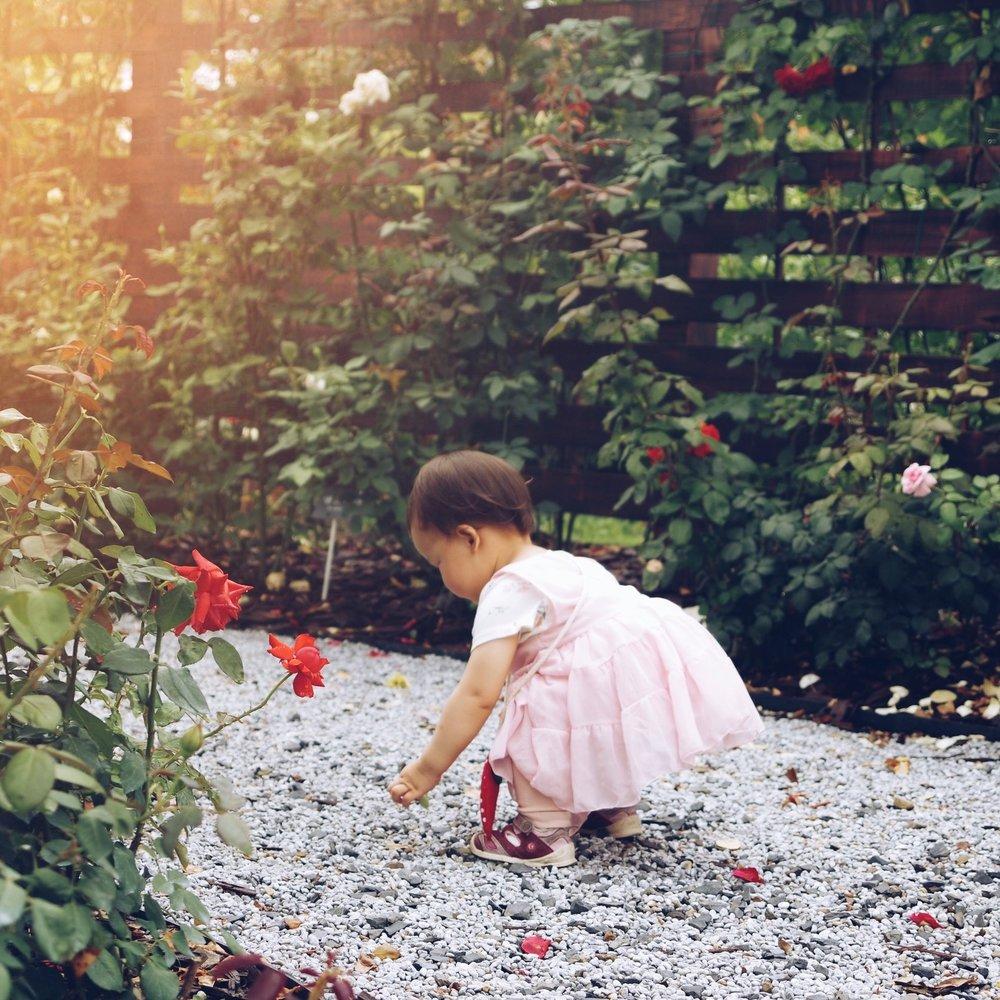 Girl Flowers.jpg