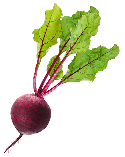 Premature Beetroot.png