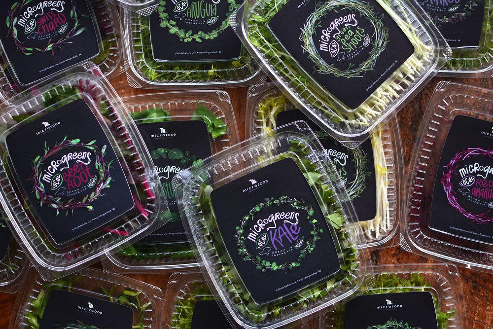 Microgreens1.jpg