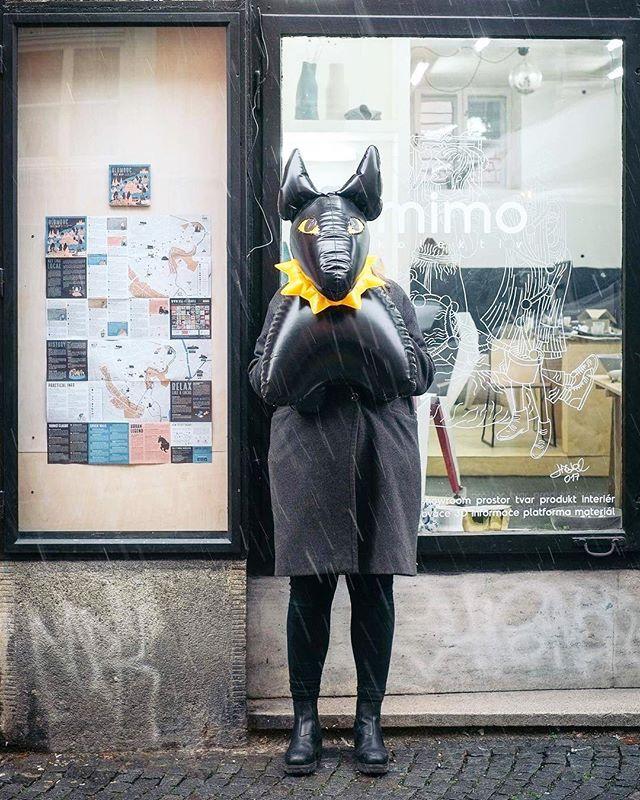 Mimohlídač #bulikthedog od #jancapek se oficiálně stal součástí #mimokolektivu!!! K dostání máme i tradiční nafukovací hračky od Libuše Niklové! ❤️ Sleduj také novou vitrínu, kde máme čerstvou mapu #useit Olomouc s nejlepšími tipy pro #youngtravellers #madebylocals!——————————————— #mimokolektiv #atelier #designshop #neztratilijsmese #žítztracená #olomouc #useit #useitolomouc #fatra