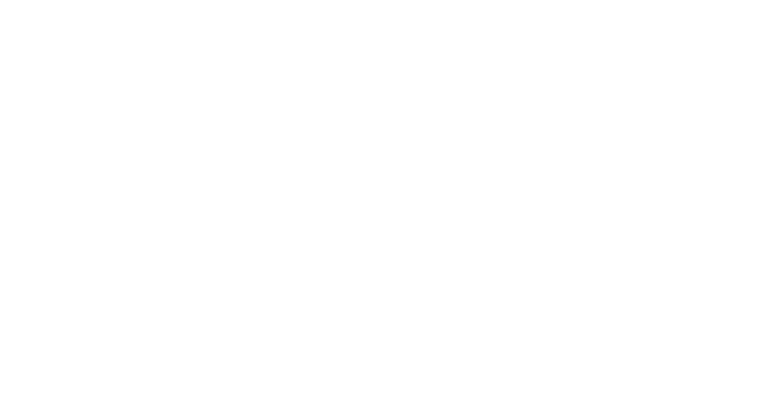 South Carolina Miss Amazing