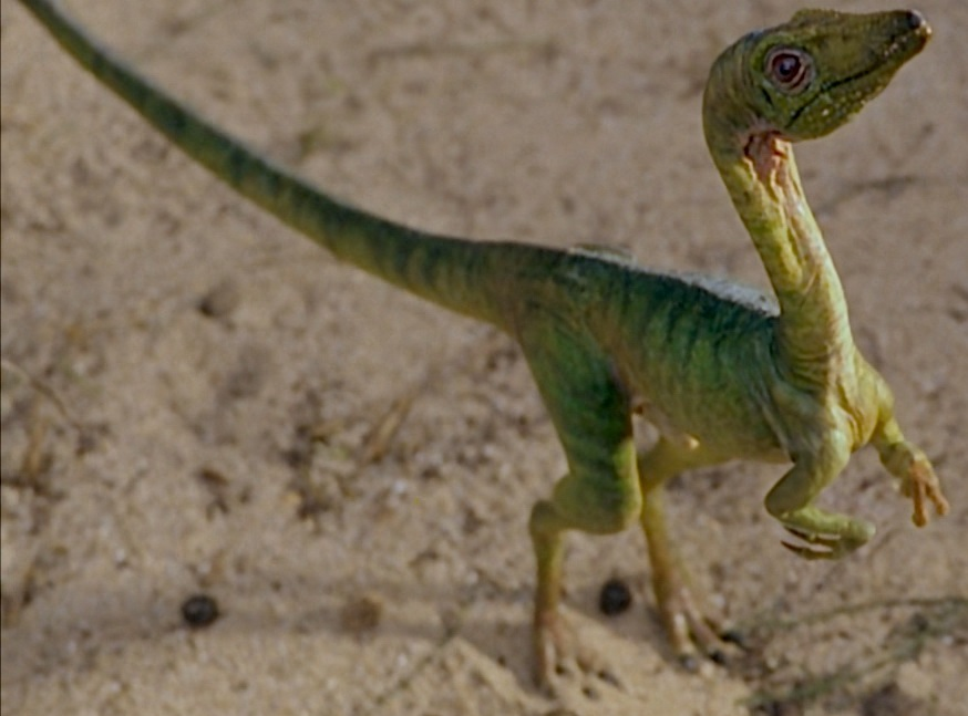 Do you have any idea how hard it is for a six year old to learn how to say compsognathus?
