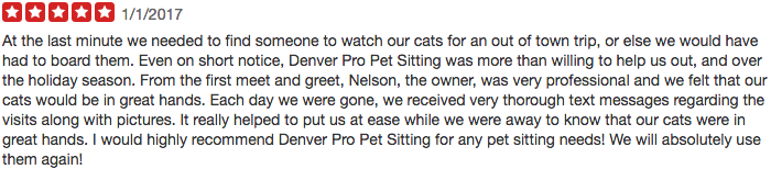 Denver Pro Pet Sitting Yelp Review