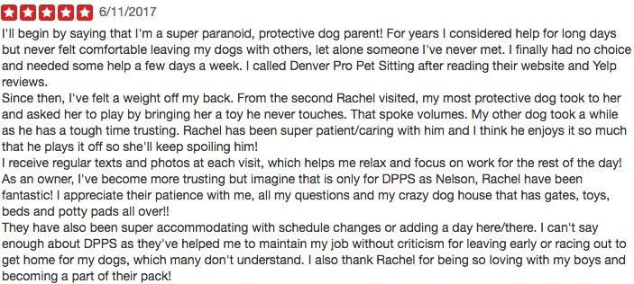 Denver Pro Pet Sitting 5 Star Yelp Review_4.png