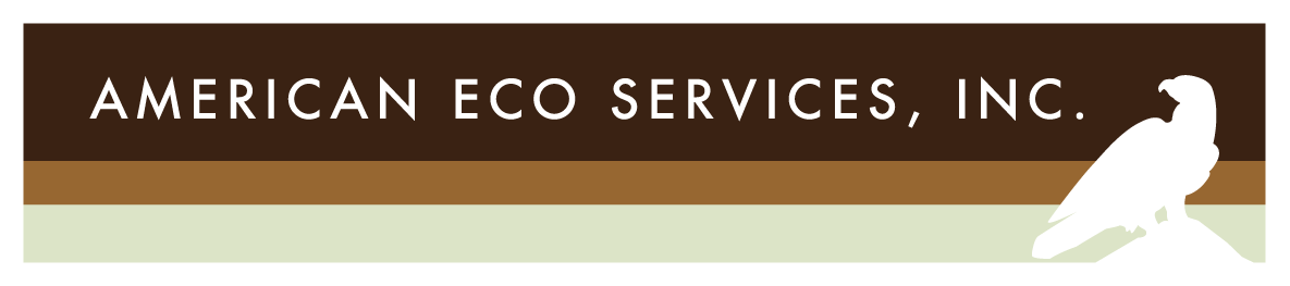 American Eco Services, Inc.