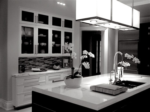 BW CONTEMP KITCHEN.jpeg