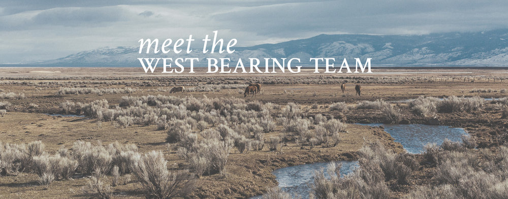 Meet the West Bearing Team