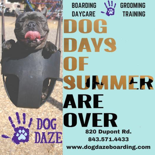 Dog Daze Ad NEW.png