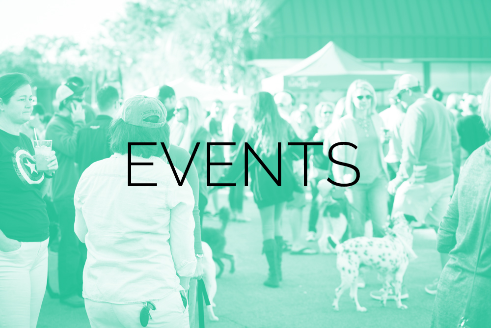 Lowcountry Dog EVENTS 2.jpg