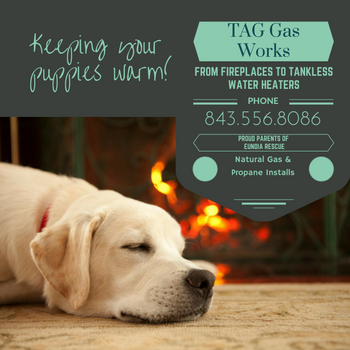 Thanks to TAG GAS WORKS for sponsoring these adoptable dogs from CROW MOON RESCUE