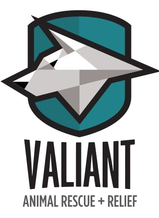 valiant-3.png