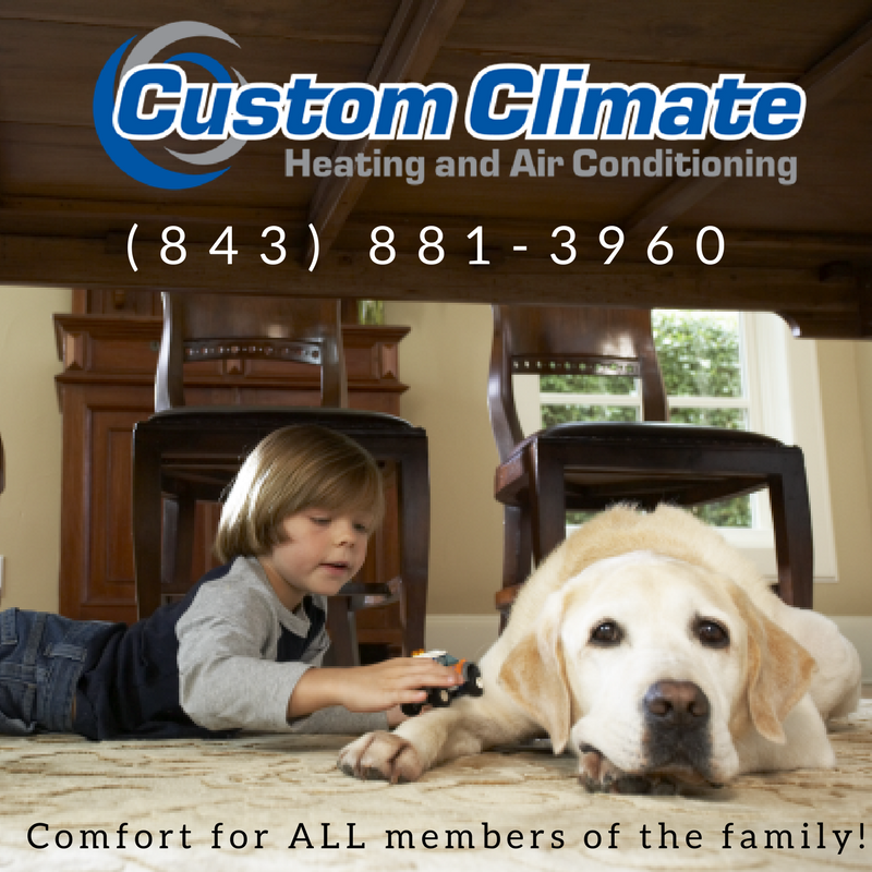Thanks to the Custom Climate HVAC for sponsoring these  adoptable dogs from HALLIE HILL SANCTUARY.