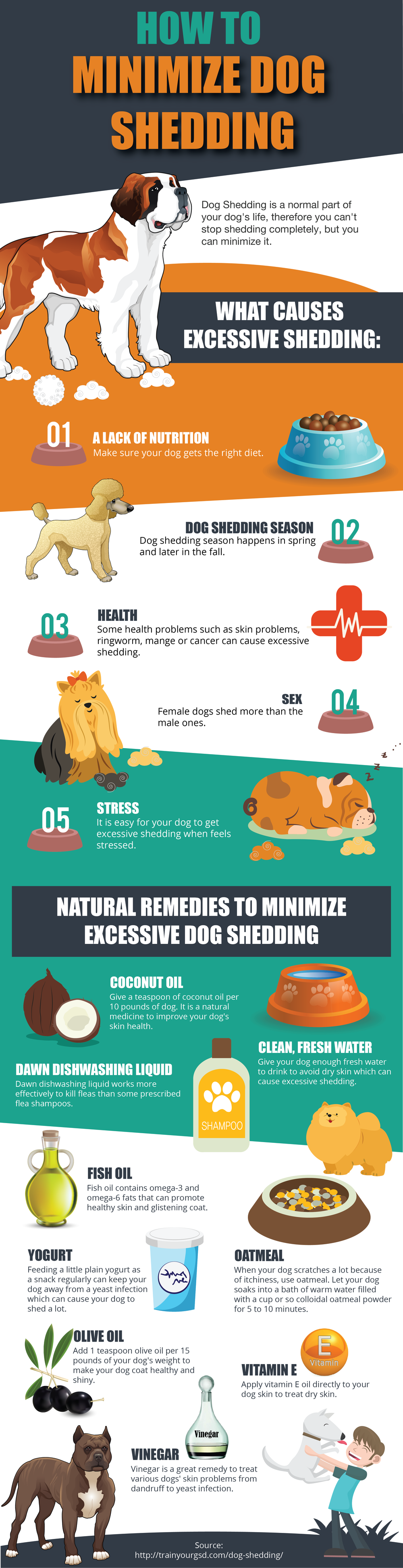 How_to_Minimize_Dog_Shedding01 (2).png