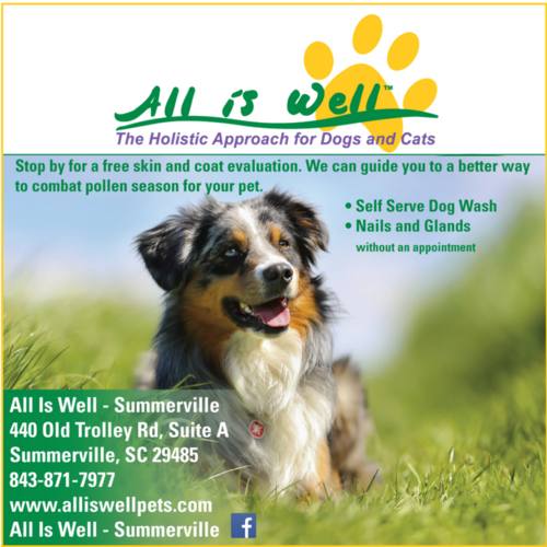 Services lowcountry dog summerville solutioingenieria Gallery